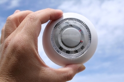 Business Management – Temperature or Thermostat?